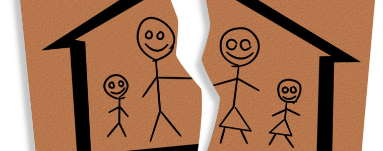 Решением суда произведен раздел имущества между супругами в равных долях, задолженность по кредитному договору признана общим долгом супругов
